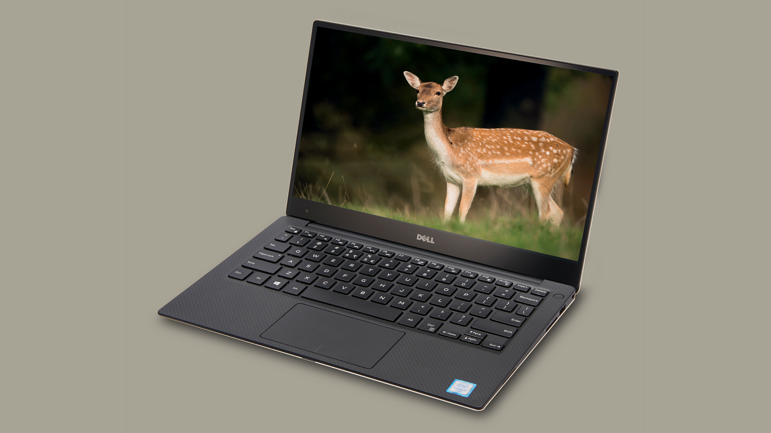Best Laptop for Writers And Photographers