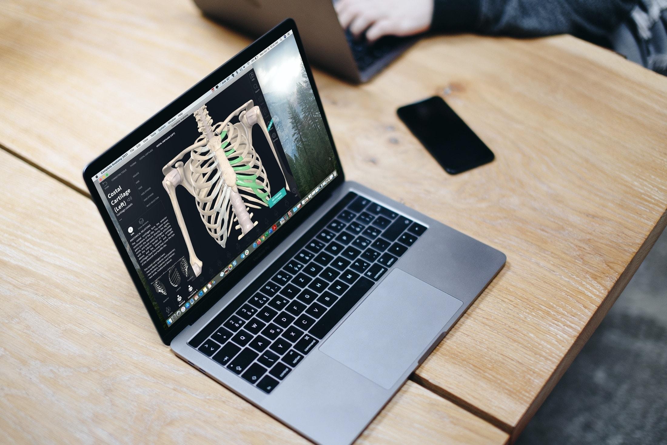 Best Laptop for Medical Illustration
